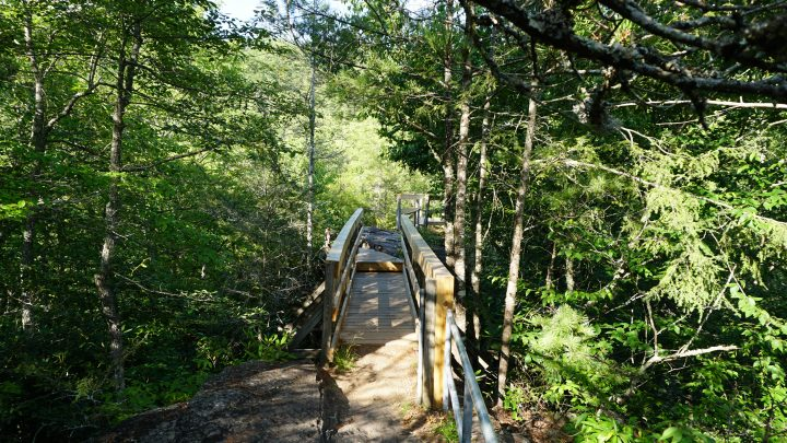 bridge at backbone rock
