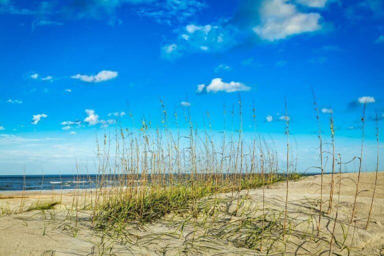 Immerse Yourself in Luxury on Amelia Island, Florida