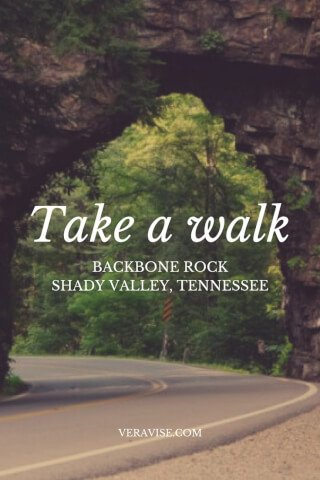 Travel Guides: Hiking Backbone Rock Shady Valley, TN