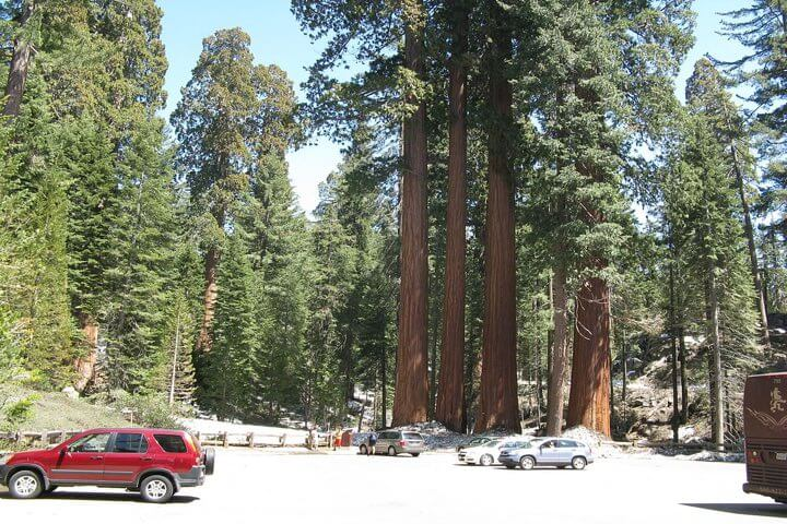 General Grant Grove Parking
