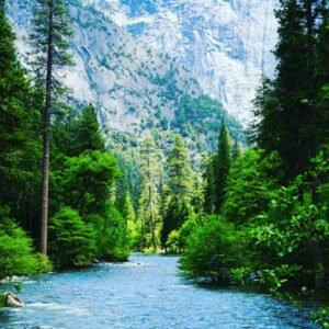 Image of Yosemite Valley River