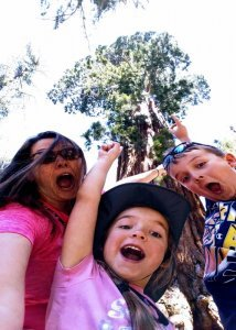 Family WOWed by Sequoias