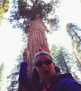 Image of Large Sequoia Tree and Myself In Awe