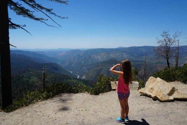 Yosemite National Park View Along Wawona Road