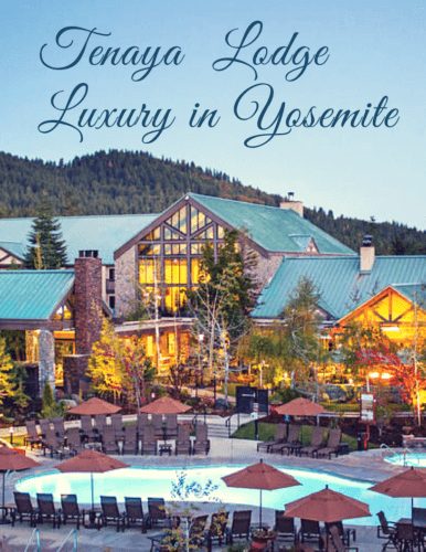 Tenaya Lodge Luxury In Yosemite Pin
