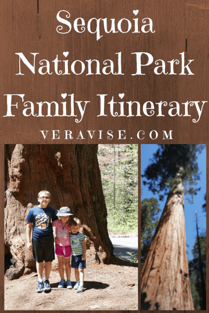 Sequoia National Park Family Itinerary