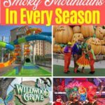 things to do in the Smoky Mountains all year
