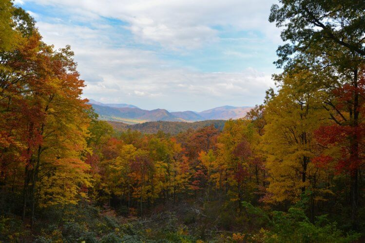 Great Smoky Mountains Fall Foliage