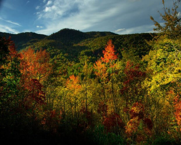 Beautiful fall views from on top of Doe Mountain Recreation Area ATV Trails in Tennessee