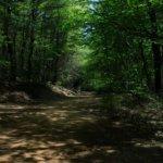 Doe Mountain Recreation Area