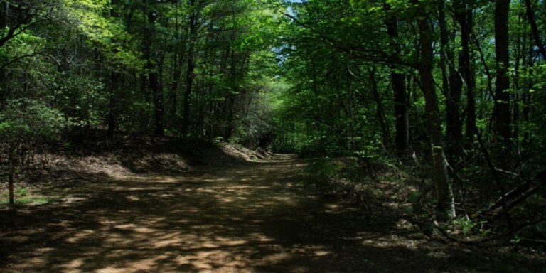 Northeast Tennessee's Doe Mountain Recreation Area & ATV Trail System
