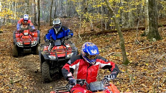 Complete guide to Brimstone Recreation ATV Trails in Tennessee. Over 19,000 acres of wilderness and 300 miles of ATV/OHV trails in Huntsville, TN. Ride your ATV from the time you get there til the time you leave. The perfect ATV outdoor vacation.
