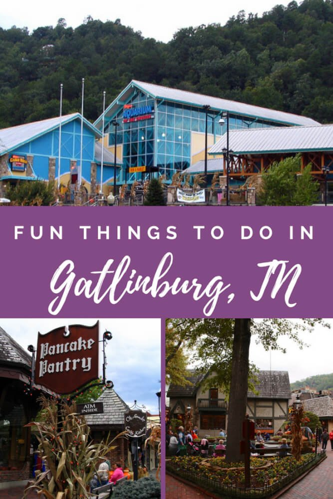 Ten Fun Things To Do In The Smoky Mountains and Gatlinburg, TN In the northeast corner of Tennessee is the well known mountain playground, Gatlinburg, Tennessee. As one who grew up here, I often took for granted the jewel I had in my own back door. As I have grown older and traveled all around this magnificent country I call home, I have a greater appreciation of all the Great Smoky Mountains and its surrounding communities have to offer. The great thing about the Great Smoky Mountains and Gatlinburg, Tennessee is that they offer something for everyone in the family. Here are 10 Fun Things To Do In The Smoky Mountains and Gatlinburg, TN with your family.