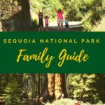 Sequoia National Park Family Vacation Guide