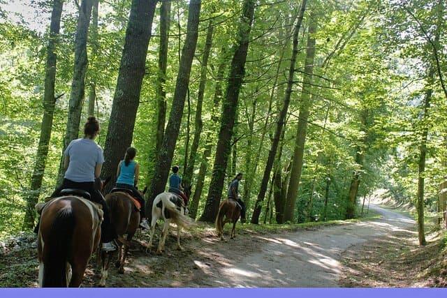 horseback riding in the smoky mountains