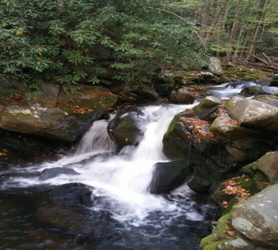 Middle Prong Trail Waterfalls