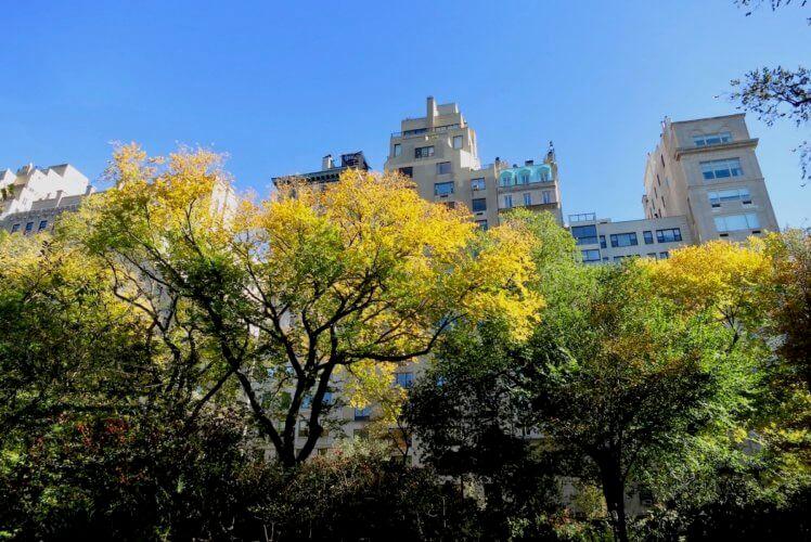october travel destination new york