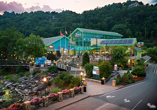 things to do with kids in the smokies at Ripley's Aquarium