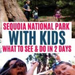 Sequoia National Park Family Guide