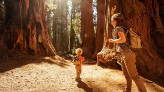 sequoia national park with kid