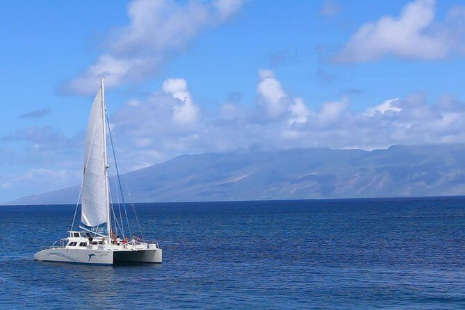 Whalewatch Sail from Lahaina