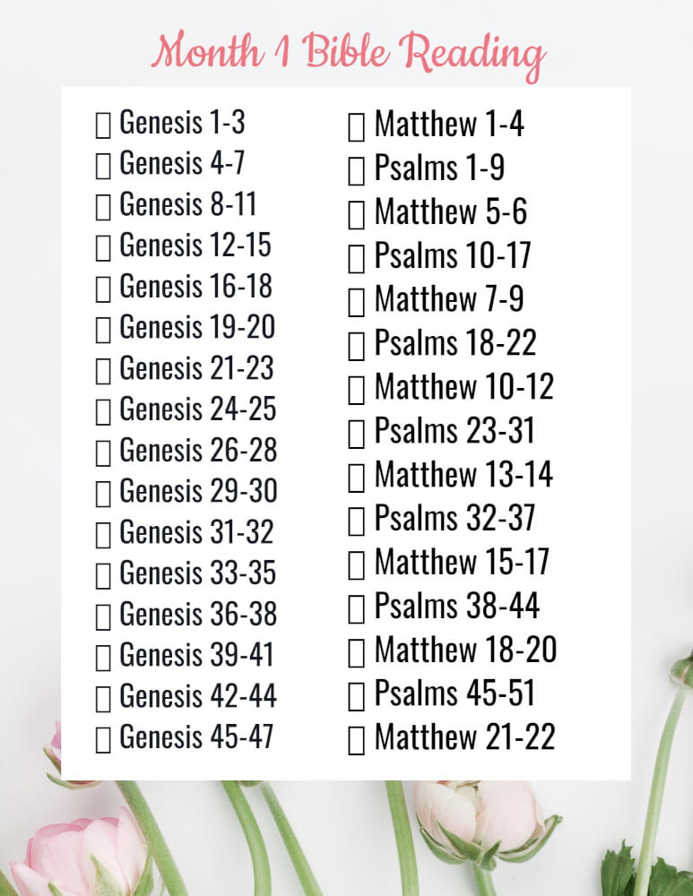 Bible reading plan pages