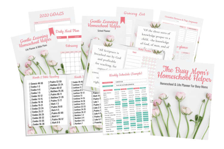 busy mom bundle png