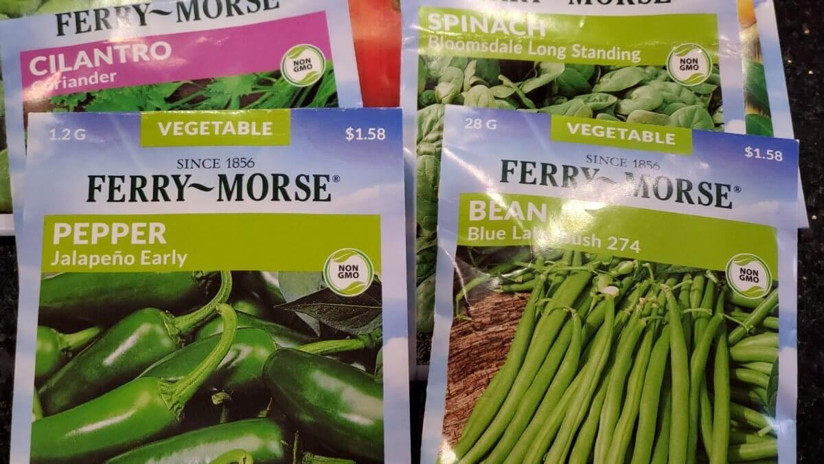 vegetable seeds for container gardening
