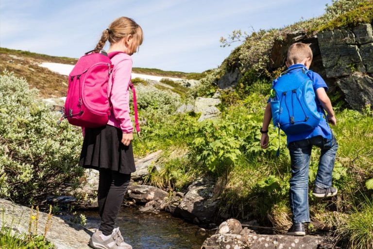 Best Kids Hiking Backpack [2021 Buying Guide]