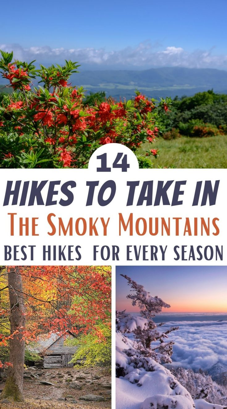 Best Hikes to take in the Smokies in Every Season