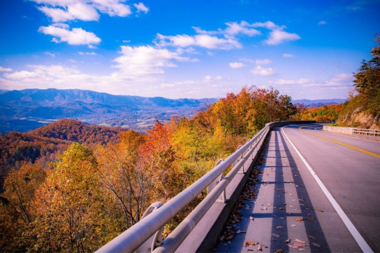 7 Best Scenic Drive in the Smoky Mountains You're Family Won't Soon Forget